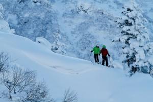 HOA_Hokkaido_Japan_Backcountry_ski_snowboard-4842