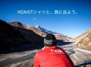 HOA_T_jp