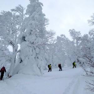 Hokkaido_Hidaka_HOA_winter_backcountry_ski_snouwboard-